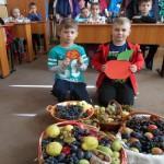 activitate-scoala-ion-irimescu-9